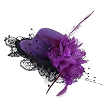 EOZY Little Girls Feather Fascinator Lace Flower Mini Hat Hairpin Hair Clip