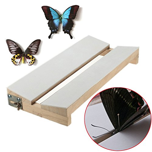 New Adjustable V Shape Insects Butterfly Spreading Mounting Board Solid Wood Wings ()