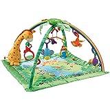 Fisher-Price Rainforest Soft Gym
