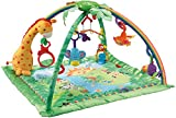 Fisher-Price Rainforest Melodies and Lights Deluxe Gym (Baby Product)