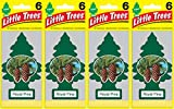 Little Trees Royal Pine Air Freshener, (Pack of 24)
