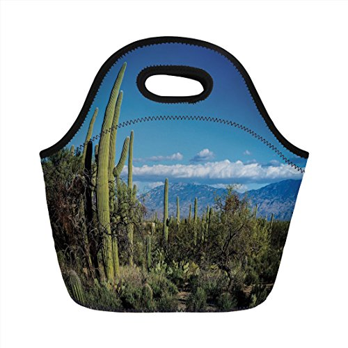 Neoprene Lunch Bag,Desert,Wide View of the Tucson Countryside with Cacti Rural Wild Landscape Arizona Phoenix,Green Blue,for Kids Adult Thermal Insulated Tote Bags