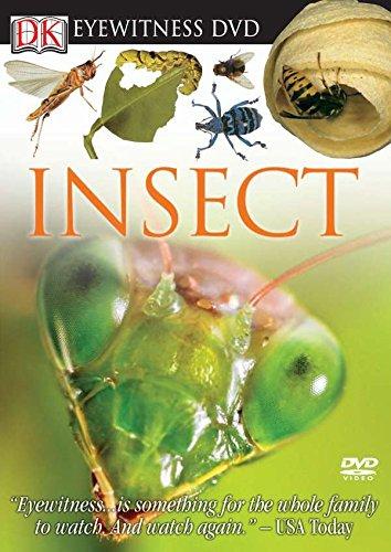 Eyewitness DVD: Insect (DK Eyewitness Video)