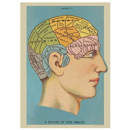 Poster of Phrenology Vintage Art Picture of Good Health ()