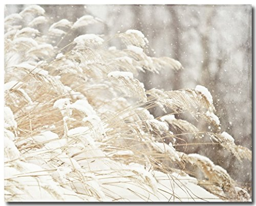 (Beige Nature Photography, Snow Grasses Picture, Grey Tan Ivory Cream.)