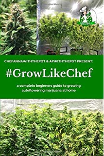 DIY Autoflowering Cannabis: An Easy Way to Grow Your Own (Homegrown