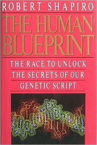The human blueprint the race to unlock the secrets of our genetic the human blueprint the race to unlock the secrets of our genetic script robert shapiro 9780312058739 amazon books malvernweather Choice Image
