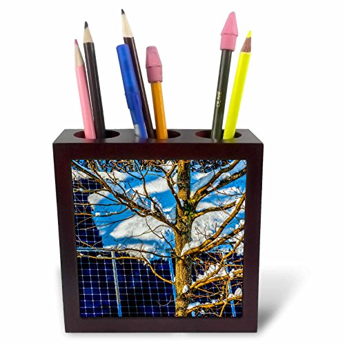 3dRose Alexis Photography - Objects - Young Oak Tree and a Snow Covered Solar Power Panel in Winter Park - 5 inch Tile Pen Holder (ph_280888_1) -