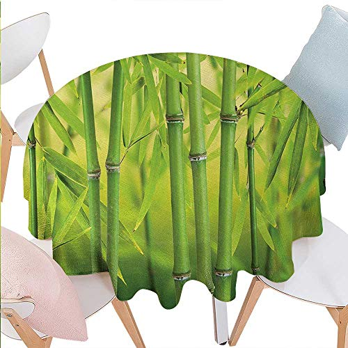 cobeDecor Bamboo Printed Round Tablecloth Close up of Bamboo Sprouts Stems Nature in Tropical Rain Forest Wildlife Asian Feng Shui Flannel Round Tablecloth D54 Green -