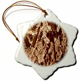 3dRose TDSwhite – Rock Photos - Natural Rock Surface - 3 inch Snowflake Porcelain Ornament (orn_281902_1)
