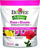 rose bush fertilizer - Burpee 99949 Organic Rose and Bloom Granular Plant Food, 4 lb