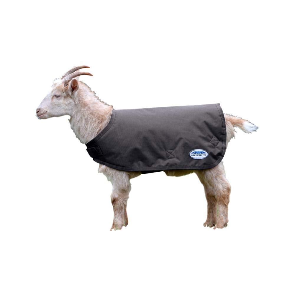 Weatherbeeta Goat Coat,