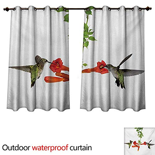 WilliamsDecor Hummingbirds 0utdoor Curtains for Patio Waterproof Two Hummingbirds Sipping Nectar from a Trumpet Vine Blossoms Summertime W55 x L45(140cm x 115cm)