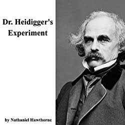 Dr. Heidigger's Experiment