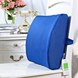 Back support seat cushion - memory foam with orthopedic design to relieve coccyx, Sciatica and tailbone pain,2 adjustable straps back pillow for computer Office chair,Car seat,Recliner-C 15x15x6inch
