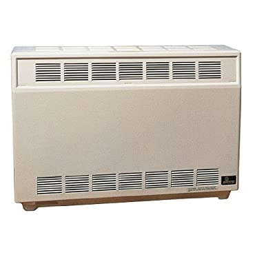 Closed Front Room Heater RH65CNAT Natural Gas