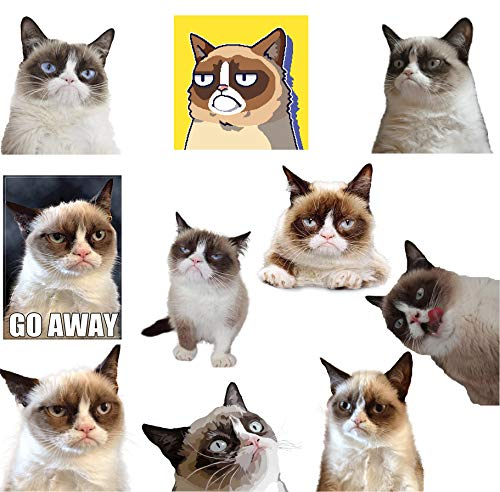 GTOTd 10-PCS Grumpy Cat Meme 4x4'' Stickers Funny Decal Bumper Stickers Vinyl Decal Sticker Pack to No