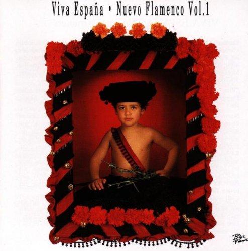 Viva Espana Nuevo Flamenco Vol.1: Various Artists: Amazon.es: Música