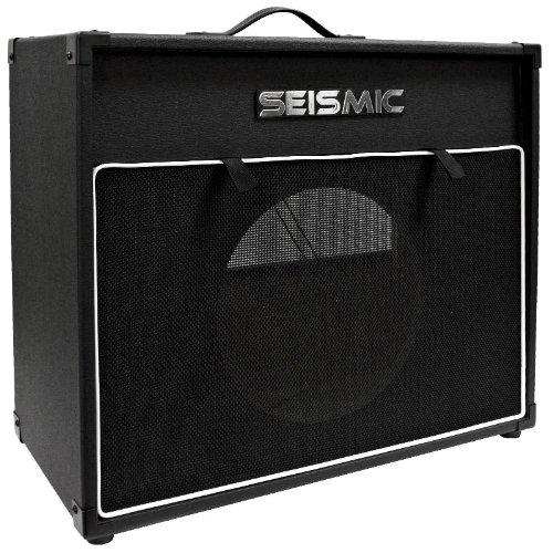 Cab Speaker Cabinet - Seismic Audio - 12