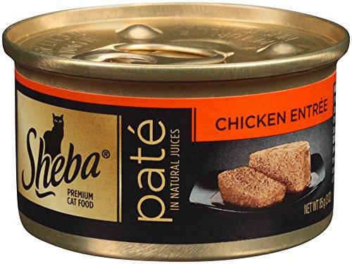 Cat Food Ounces Per Day