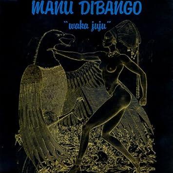 Image result for waka juju manu dibango