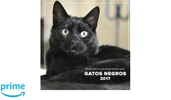 Planificador y calendario diarios para gatos negros 2017 ...