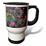 3dRose Danita Delimont - Cactus - Usa, Utah, Arches NP. Whipples Fishhook Cactus blooming and with buds. - 14oz Stainless Steel Travel Mug (tm_260304_1)