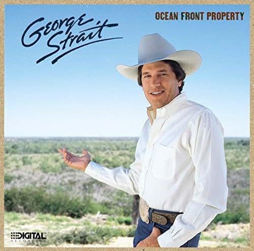 Ocean Front Property