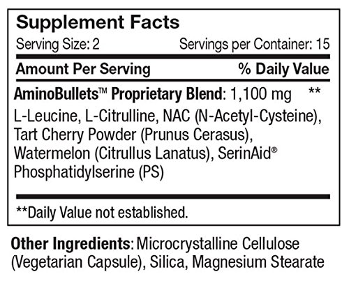 EVO Amino Bullets Muscle Recovery by FitPro USA, 40 Capsule Bottle