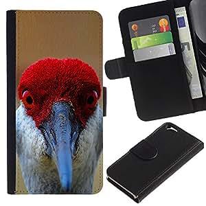 Leather Etui en cuir || Apple Iphone 6 || divertidos rojos ojos pico pluma pájaro tropical @XPTECH