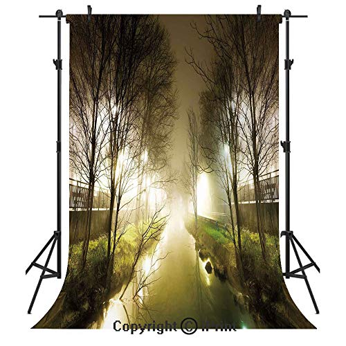 Forest Photography Backdrops,Water Channel Foggy Weather Trees Grass City Street at Winter Night Mystery,Birthday Party Seamless Photo Studio Booth Background Banner 6x9ft,White Green Brown