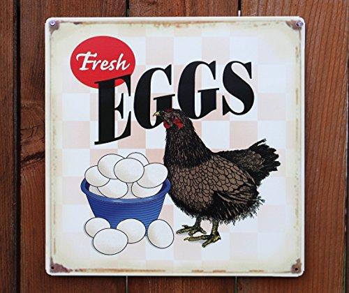 Fresh Eggs Hen Chicken Distressed Tin Sign 14 x 14in