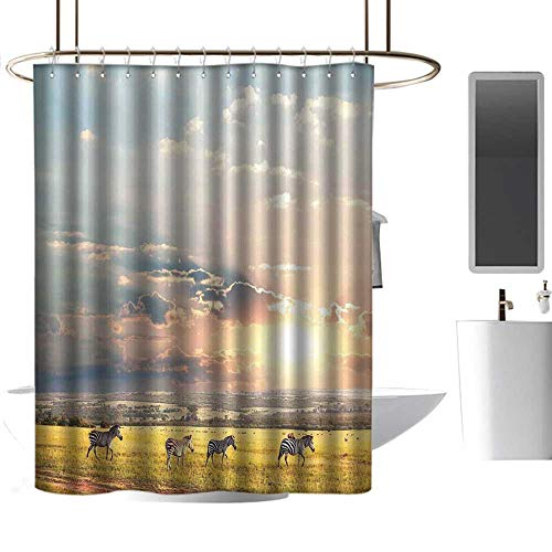 Shower Curtains Prime Safari Decor,Zebras Africa Exotic Wildland Natural Distant Forest Morning View Scenic Picture Print,W48 x L84,Shower Curtain for Small Shower stall (Footstool Print Zebra)