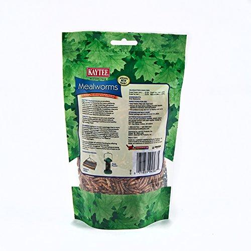 Kaytee-Mealworms-35-oz