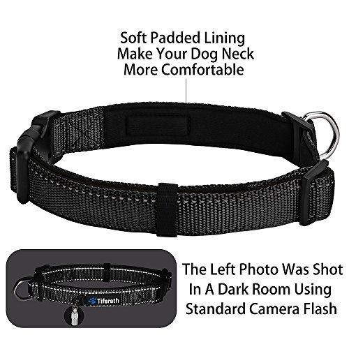 Images of Dog Collars Nylon Buckle Dog Collar Comfortable