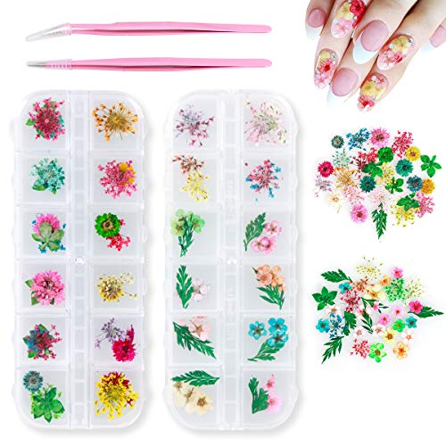 Leipple Dried Flowers for Nail Art DIY 70 PCS with 2 Tweezers - 24 Colors Mini Real Natural Flowers Petals 3D Applique for Nail Art Decoration - Mixed Nail Art Supplies Stickers Manicure.