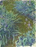 Perfect Effect Canvas ,the Cheap But High Quality Art Decorative Art Decorative Prints On Canvas Of Oil Painting 'Irises, 1914-1917 By Claude Monet', 16x21 Inch / 41x54 Cm Is Best For Powder Room Decoration And Home Gallery Art And Gifts