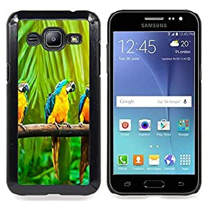 GIFT CHOICE / Teléfono Estuche protector Duro Cáscara Funda Cubierta Caso / Hard Case for Samsung Galaxy J2 / J200 // COLORFUL PARROT MACAW RAINBOW //