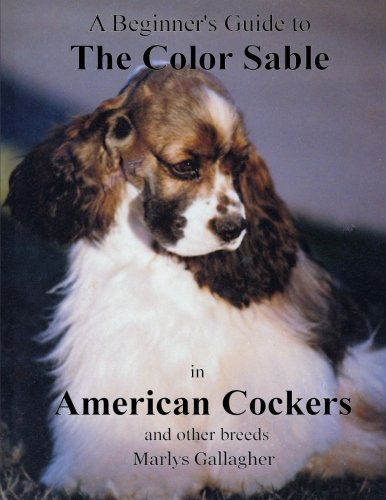 A Beginner's Guide to The Color Sable in American Cockers for sale  Delivered anywhere in USA