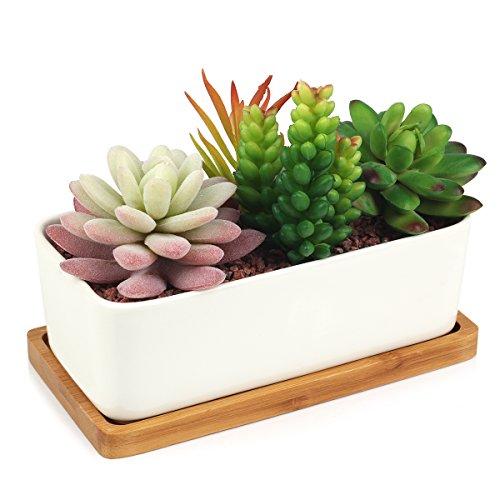 Rectangular Planter Large (Succulent Planter, Digsky Modern White Ceramic Cactus Flower Pot Plant Pot with Bamboo Tray (Rectangular))