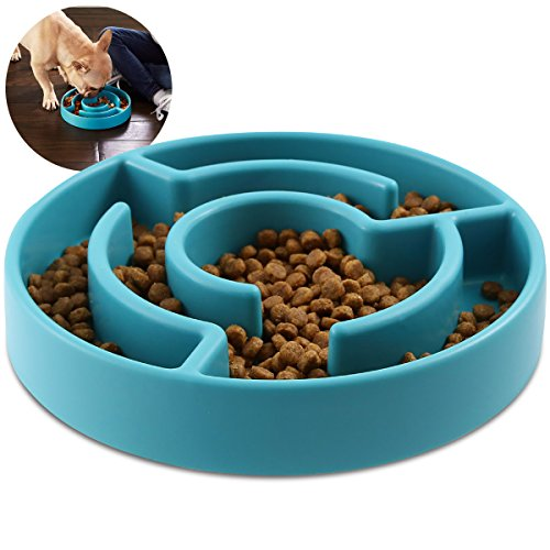 Animal Planet 9-Inch Slow Maze Feeder Pet Bowl for Small/Medium Dogs, Aids in Digestive Health and Weight Control, Rubber Grip Bottom, Fits 2 Cups of Kibble for Calorie Control, Teal