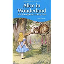 Alice in Wonderland and Through the looking Glass(Annotated) (English Edition)
