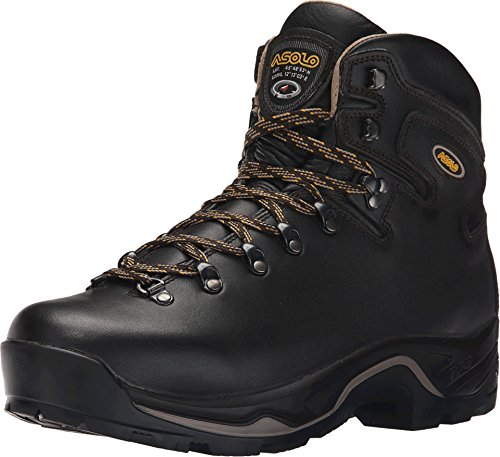 Asolo TPS 535 LTH V Evo Hiking Boot - Men's - 8.5 - Brown