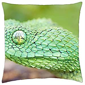 Year of the snake VII. - Throw Pillow Cover Case (18