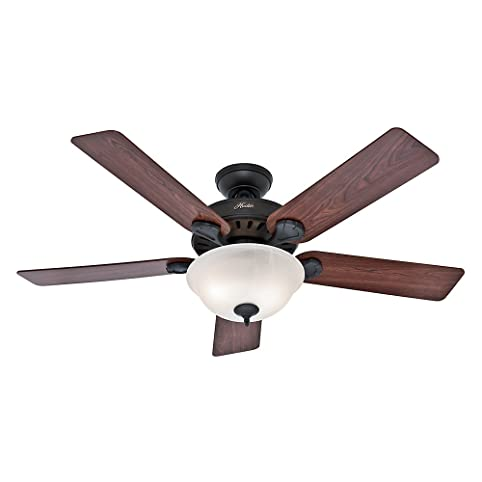 Exceptionnel Hunter 53250 Prou0027s Best 52 Inch 5 Blade Single Light Five Minute Ceiling Fan