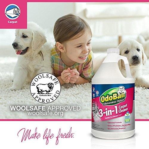 OdoBan 3-n-1 Carpet Cleaner, 1 Gal