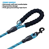 ladoogo 2 Pack 5 FT Heavy Duty Dog Leash with