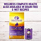 Wellness Natural Pet Food Complete Health Natural