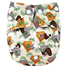 "Kawaii Baby One Size Snazzy Minky Cloth Diaper with 2 Microfiber Inserts ""Bird House"""