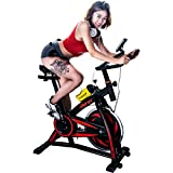 Merax S301 Indoor Cycling Bike Cycle Trainer Exercise Bicycle (Red1)